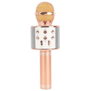 میکروفن اسپیکر چندکاره WS-858 4